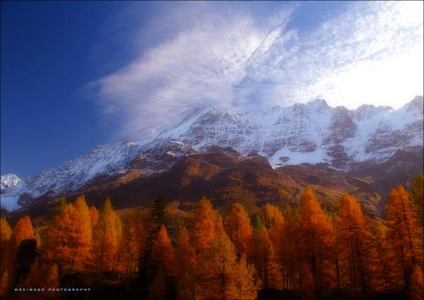Souvenir d'automne...