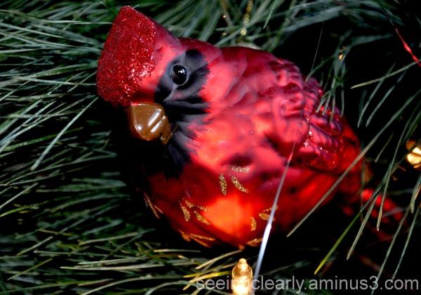 My Granny Loved Cardinals