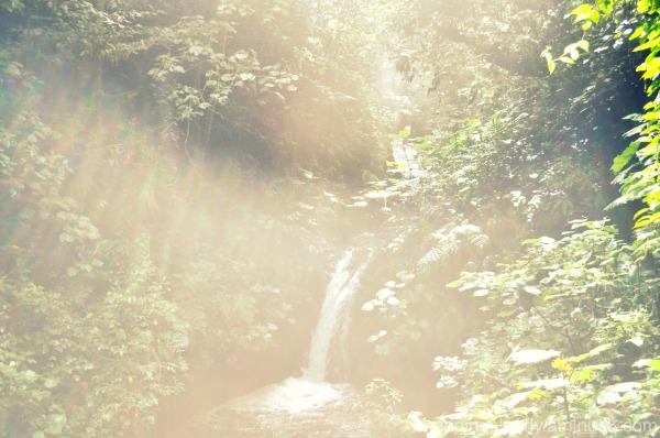 La Niebla de la Cascada