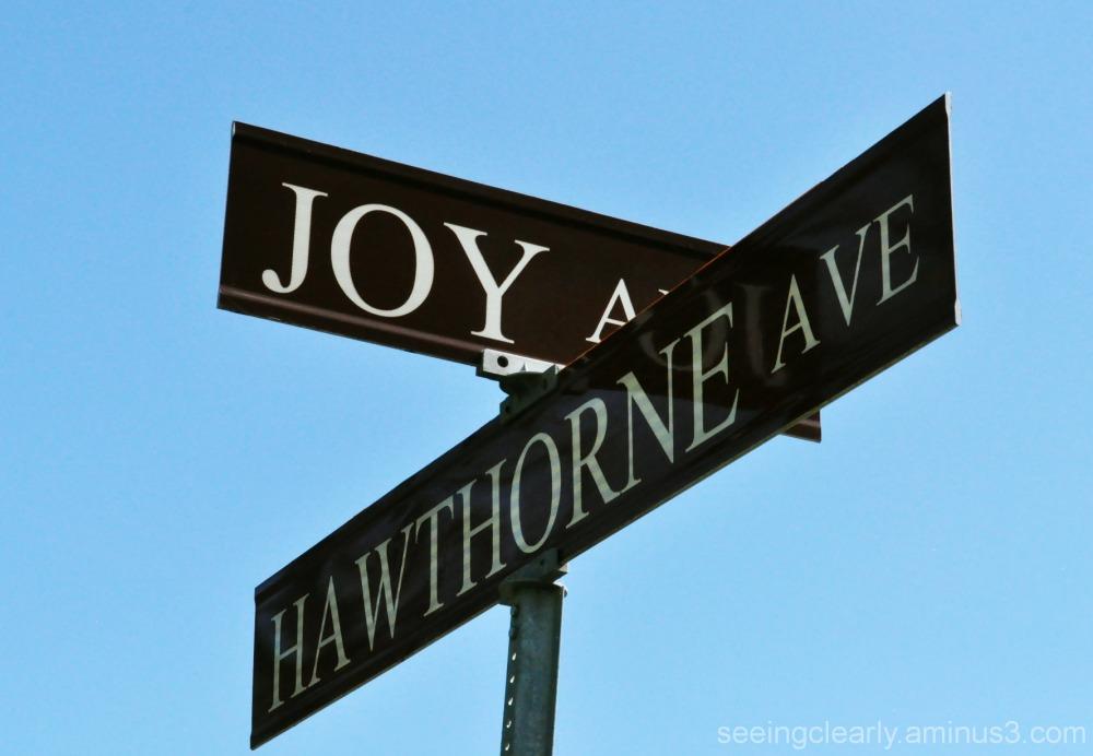 Joy and Hawthorne