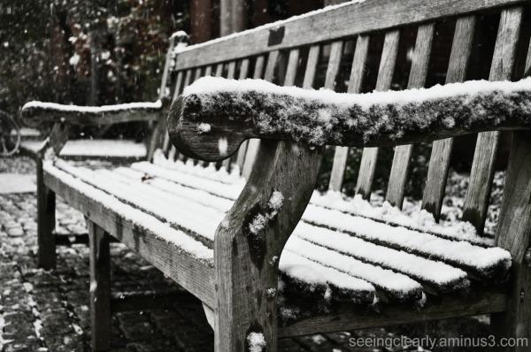 Season's First Snowfall [5]