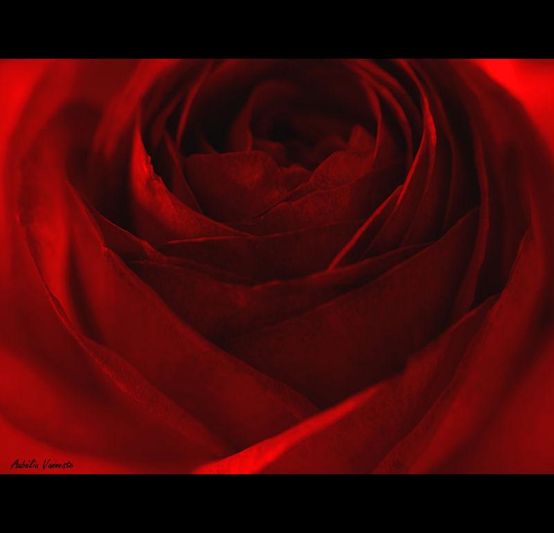 La couleur rouge