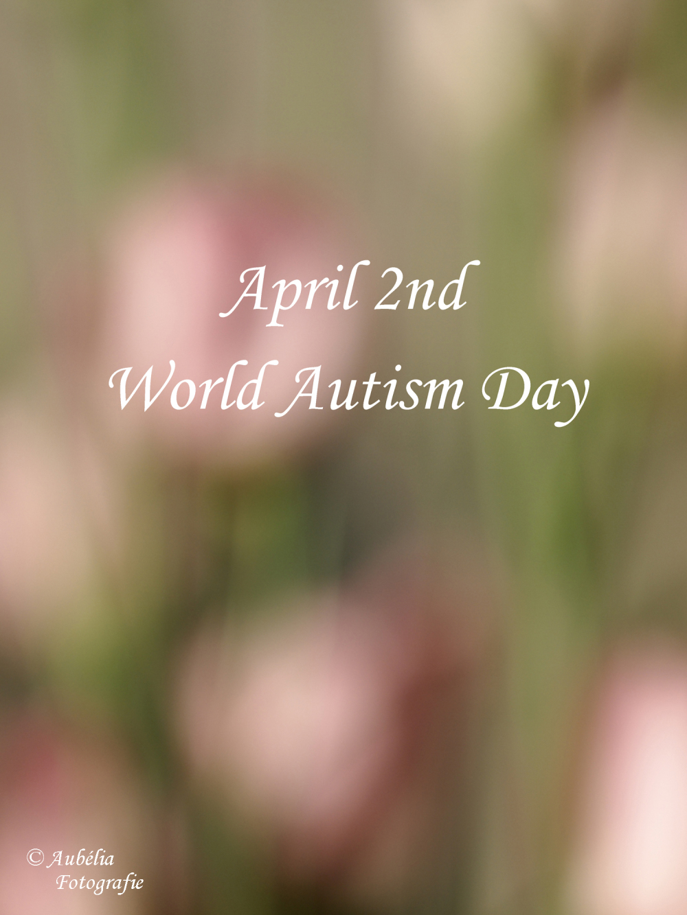 April 2nd World Autism Day