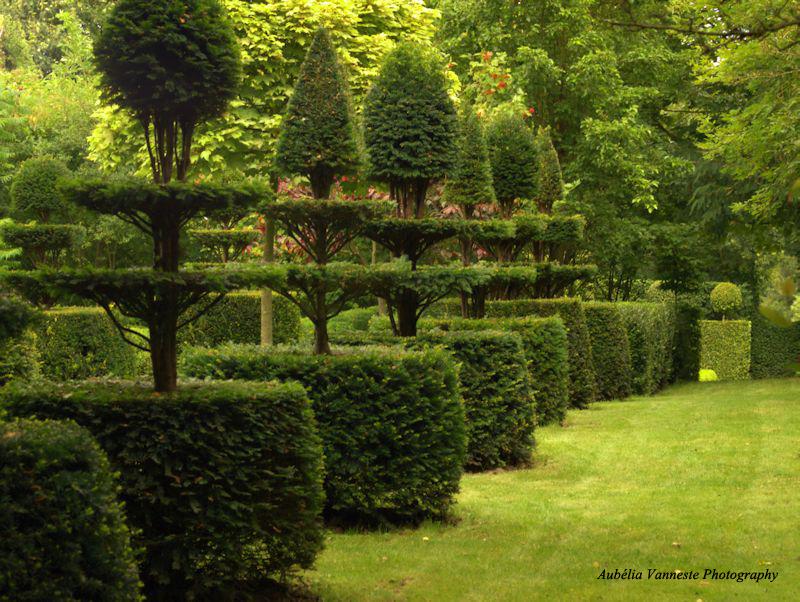 Le jardin du mont des Récollets