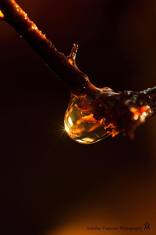 Crystal in golden light