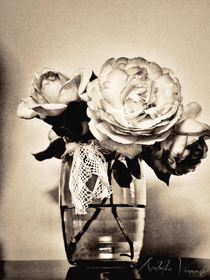 Un bouquet avec des Roses