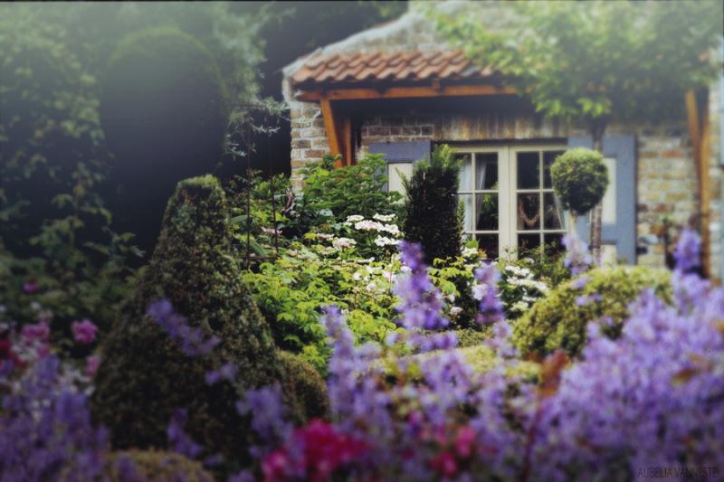 Enjoyment in the garden