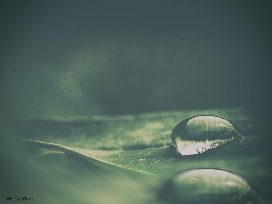 A H2O world