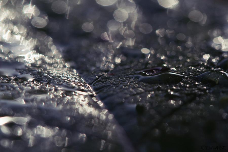 L'eau fait des merveilles