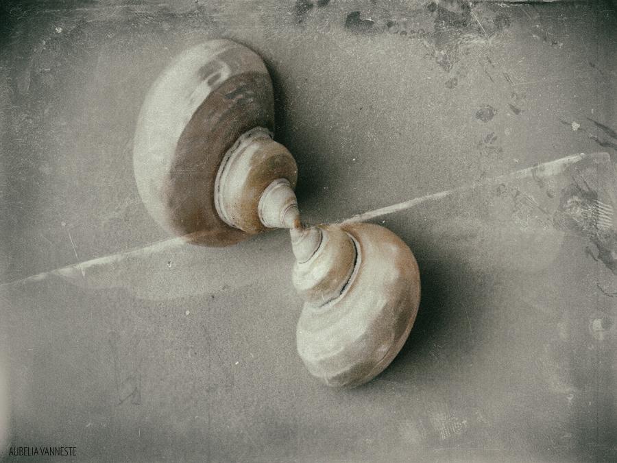 The love between shells
