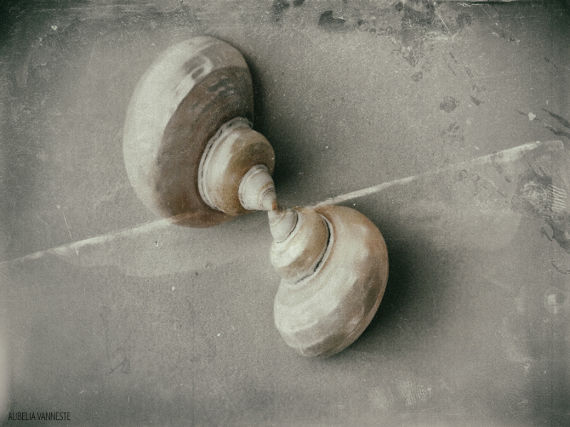 The love between shells