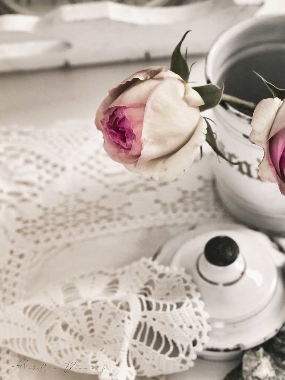About Roses