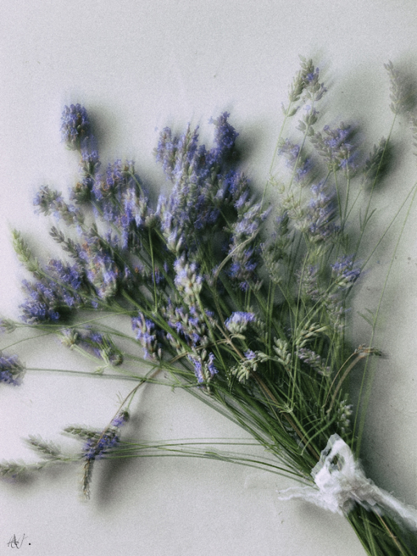 Mmm... Lavender