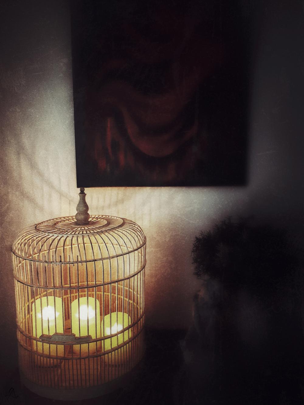 La lumière du soir