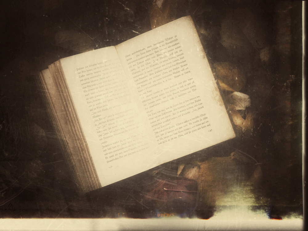 Reading a book in an autumn atmosphere