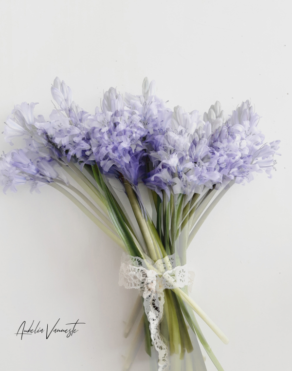 A bouquet of flowers