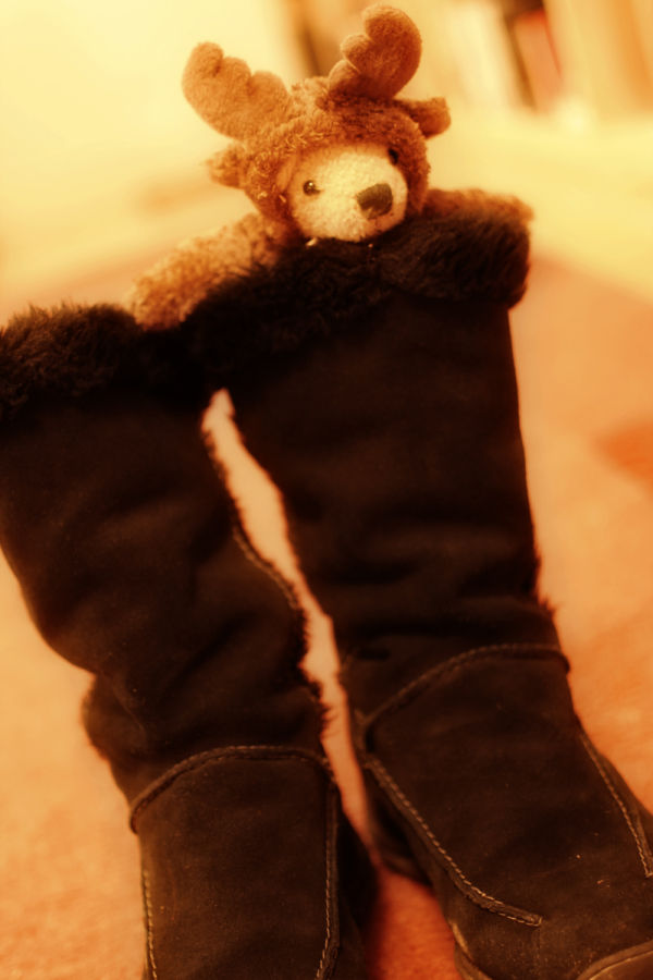 Bear in Boots