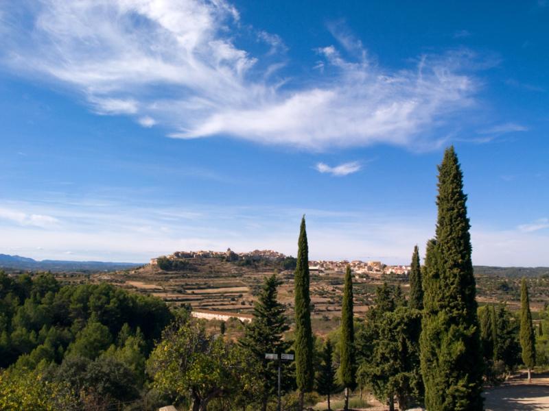 Horta de Sant Joan II