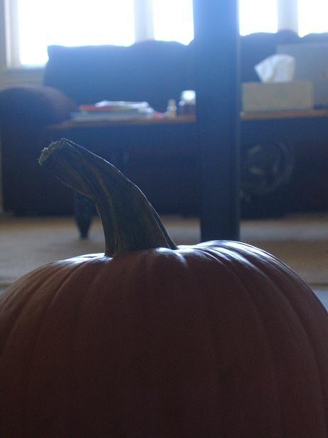 art photo of pumpkin in doors