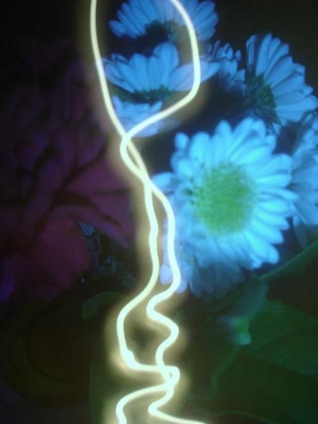 flower light indoor artsy vase