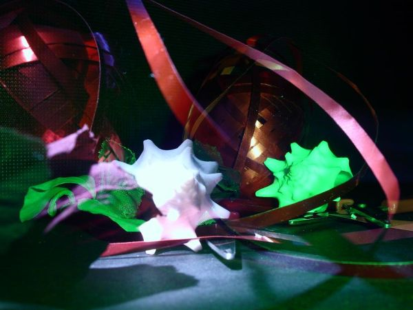 artsy green-light conch shell abstract