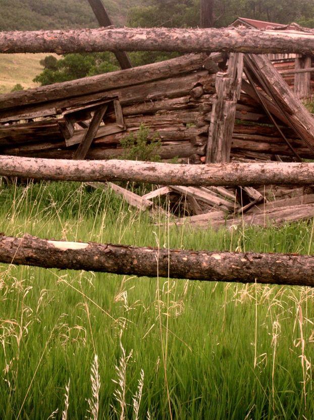 colorado outside grass summer wabi-sabi