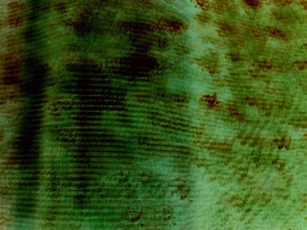 experimental negative long exposure of curtains