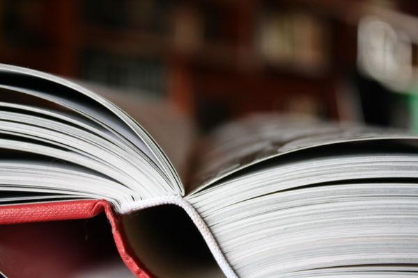 Una porta oberta al coneixement