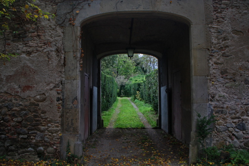 Camí i portalada (Road and gate)