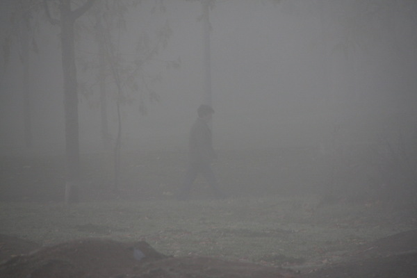 Matí a Vic. Passejant  3/3 (walking)