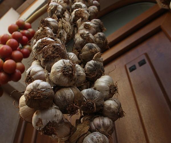 Alls (garlics)