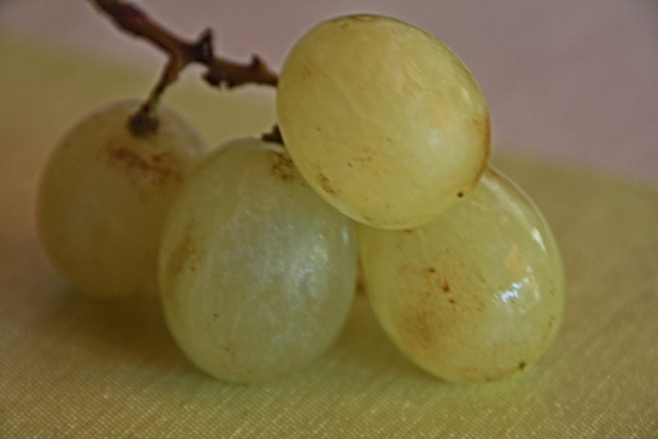 Raïm.   (Grape)