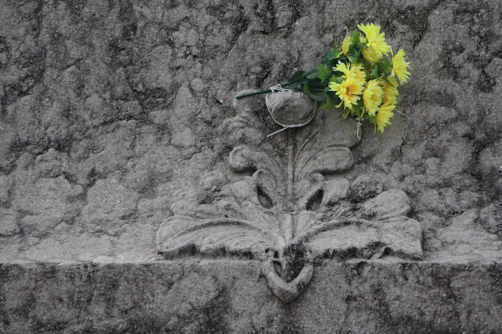 Visita al cementiri - 11 -Detalls #2