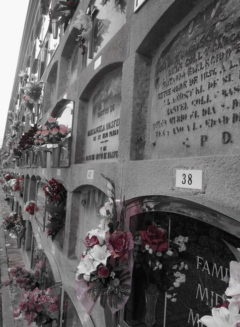 Visita al cementiri - 13 - Perspectiva