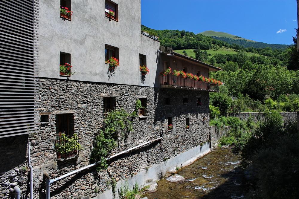 Ribes de Freser (riu Rigart)