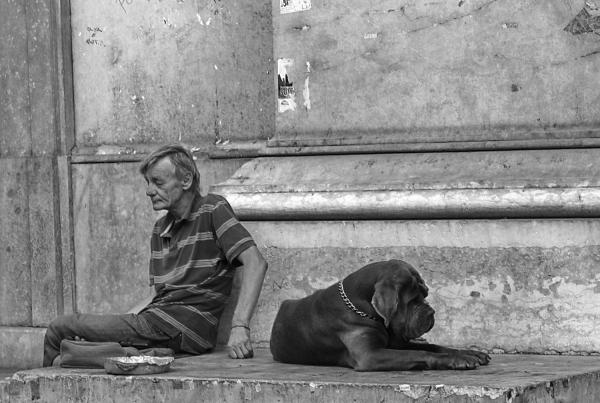 L'home i el Gos