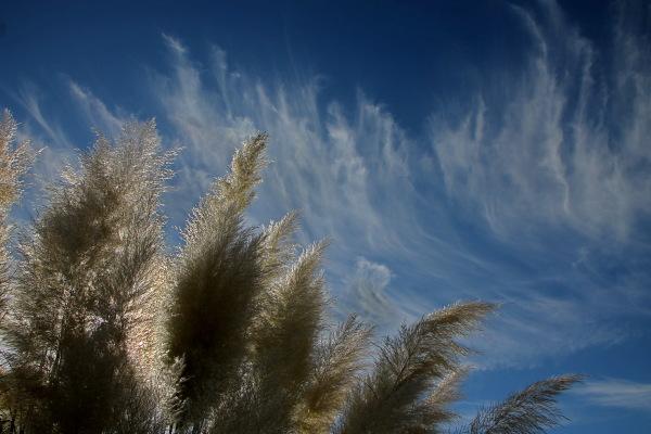 Escombrant el cel