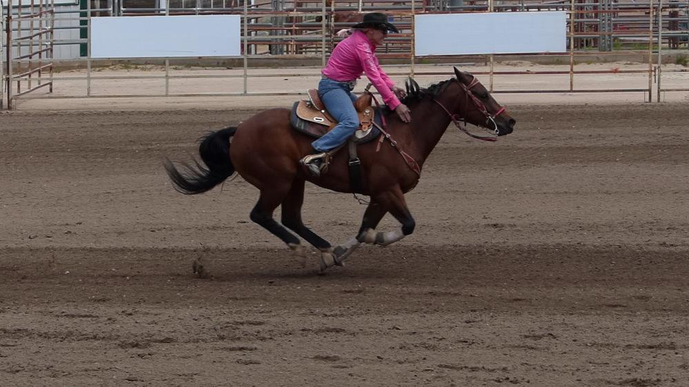 Barrel racing (2/3)