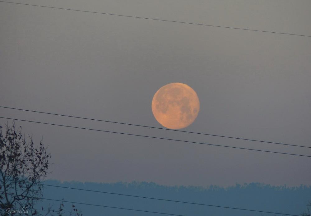 Lluna matinera
