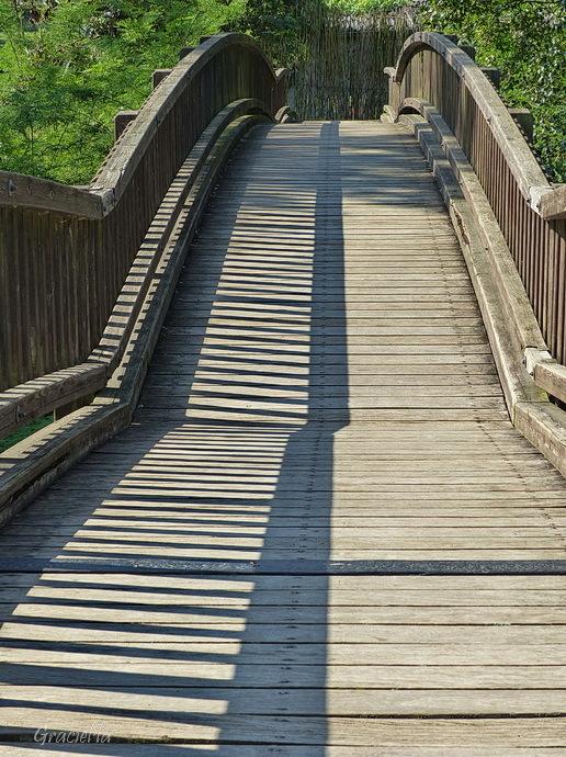 Pont i ombres