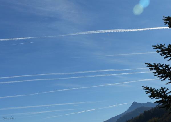 Molts avions