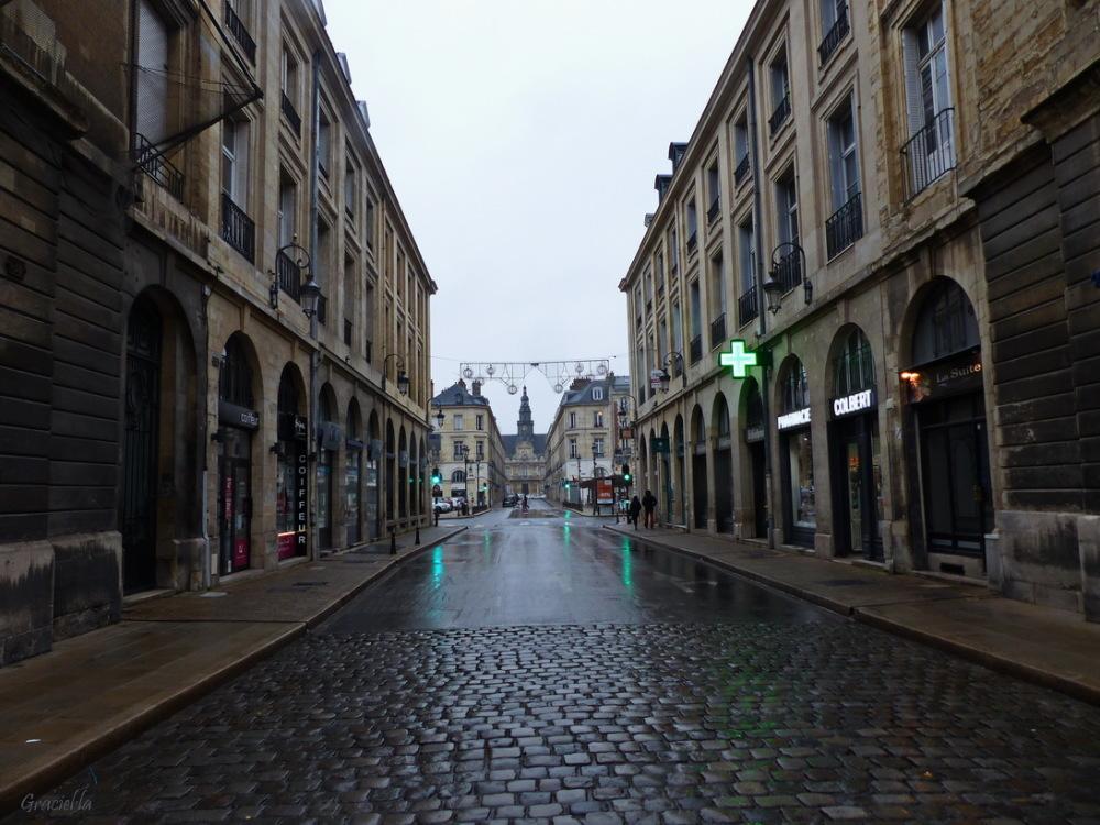 Tarda grisa a Reims