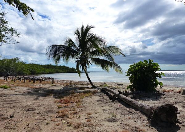 Playa Girón ( a prop)