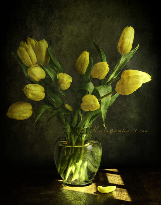 yellow tulips in glass vase texture