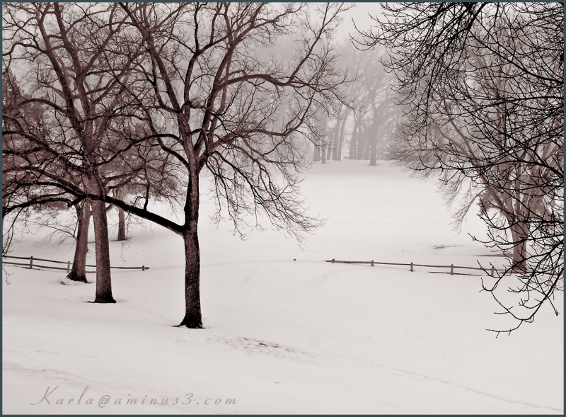 winter landscape in Elmwood Park in Omaha Nebraska
