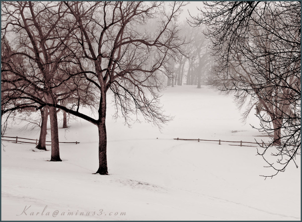 winter landscape in Elmwood Park in Omaha Nebraska
