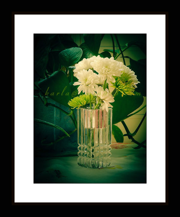 glass vase with white and green chrysanthemums