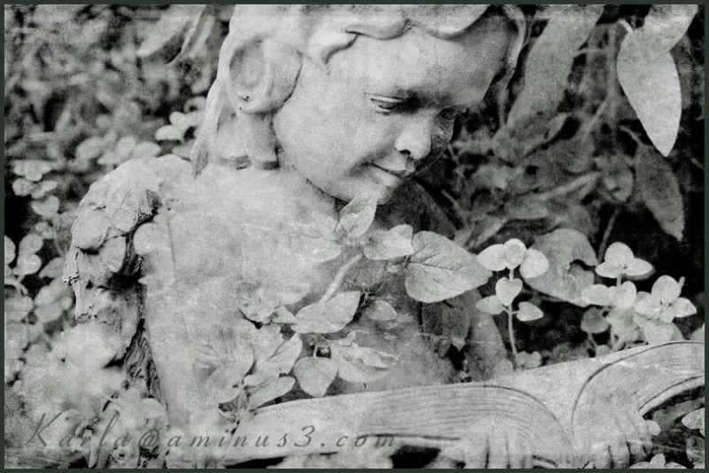 garden statue reading book texture herb