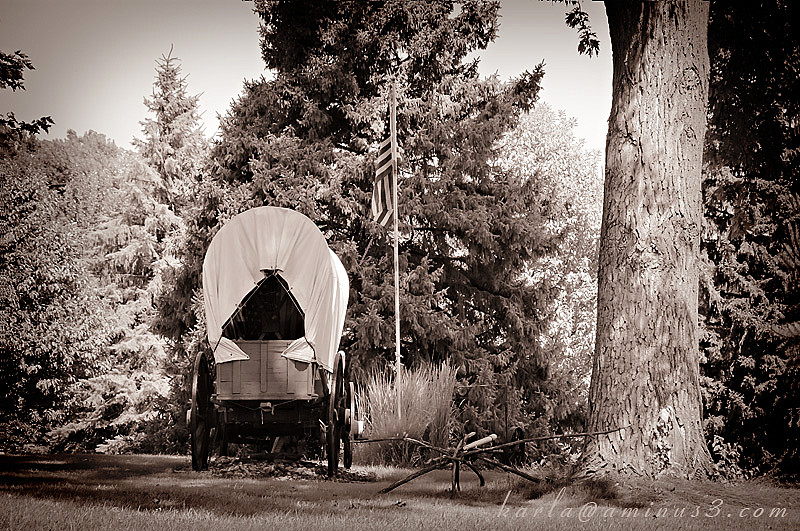 transportation, covered-wagon