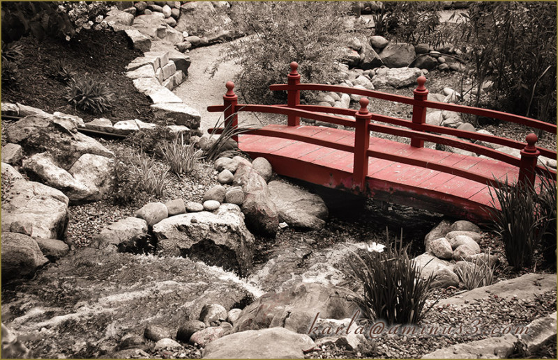 garden, stream, rock, bridge, red